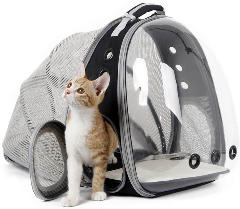 Expandable Cat Bubble Backpack