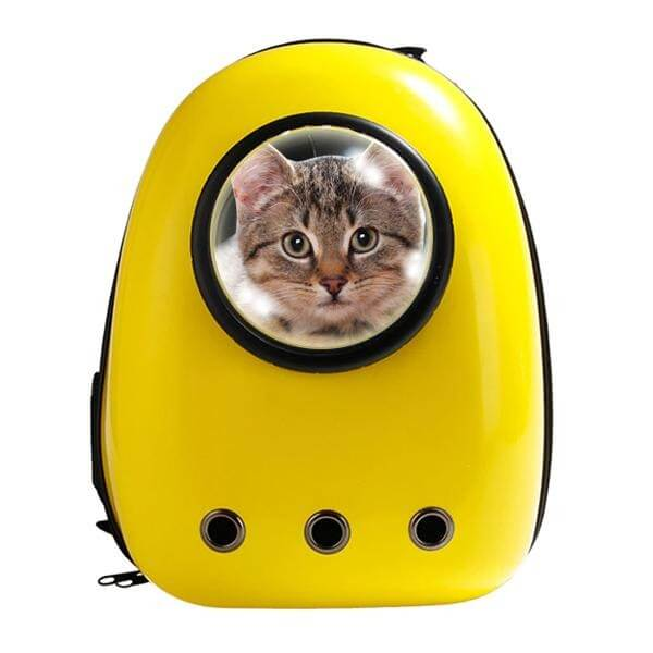 Yellow Cat Bubble Backpack