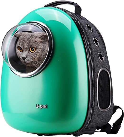 Greenish Cat Bubble Backpack