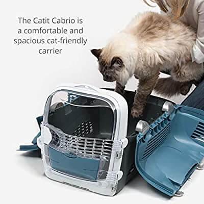 Cat Friendly Carrier