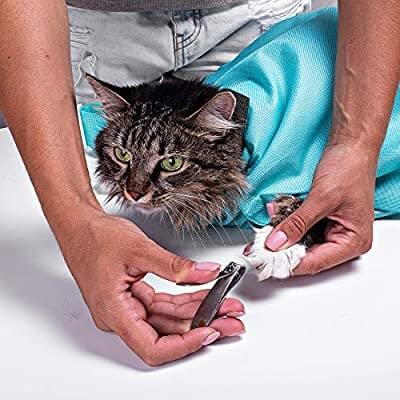 Cat Carrier Pouch