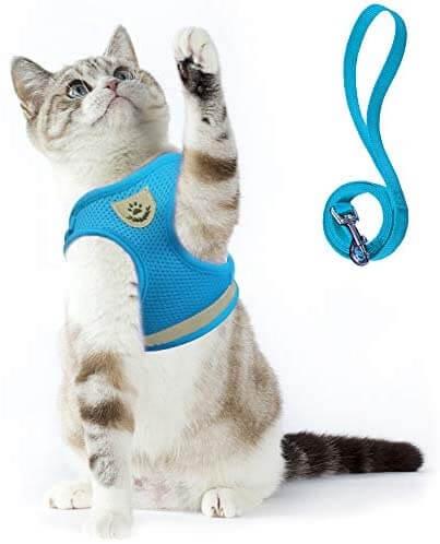 Reflective Cat Harness