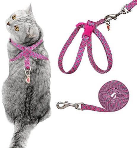 Pink Cat Harness