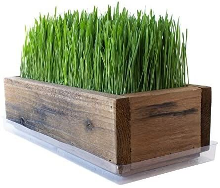 Grass container